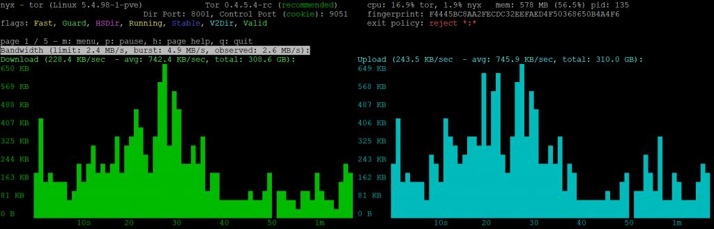 Ein Tor Relay, angezeigt mit der Software NYX